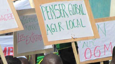 Photo of «Penser global, agir local»